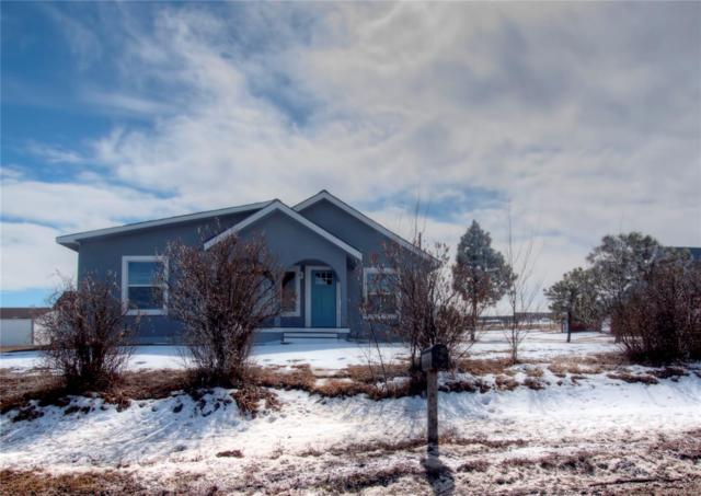 31442 Summit Street, Simla, CO 80835 (#6806093) :: Harling Real Estate