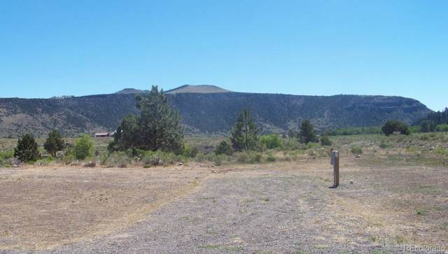 26714 State Hwy 17 Lot 11, Antonito, CO 81120 (#6806637) :: The Peak Properties Group