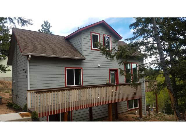 130 Potlatch Trail, Woodland Park, CO 80863 (MLS #6807682) :: 8z Real Estate
