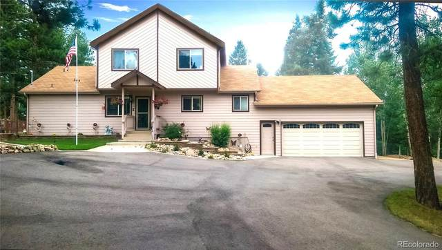 51 Bay Lane, Bailey, CO 80421 (#6812026) :: Colorado Home Finder Realty
