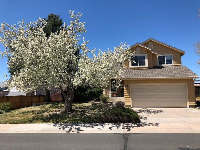 213 Saddlewood Circle, Highlands Ranch, CO 80126 (#6812402) :: RE/MAX Professionals