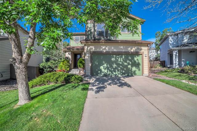 7977 Marion Court, Denver, CO 80229 (#6815619) :: The Scott Futa Home Team