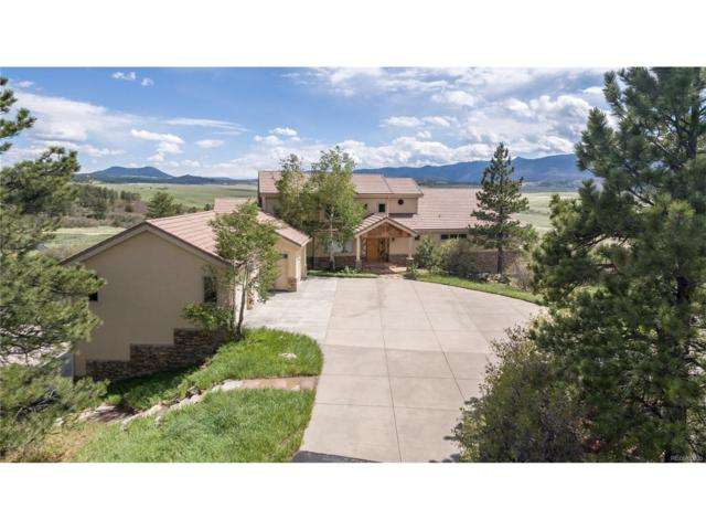 5102 S Perry Park Road, Sedalia, CO 80135 (MLS #6816981) :: 8z Real Estate
