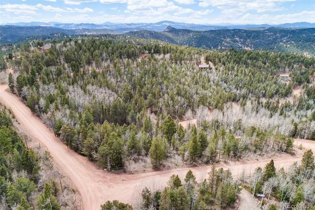 37 Apatite Road, Divide, CO 80814 (#6817472) :: The Healey Group