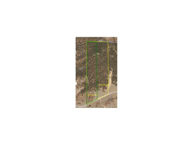 1821 Elk View Road, Larkspur, CO 80118 (MLS #6819908) :: 8z Real Estate