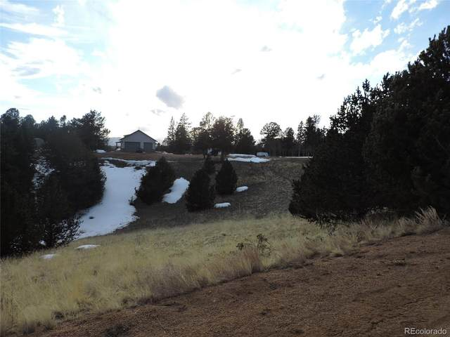 104 Crown Point Circle, Cripple Creek, CO 80813 (#6822861) :: The DeGrood Team