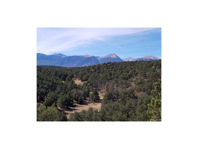1141 Prayer Mountain Pass, Cotopaxi, CO 81223 (#6827577) :: Structure CO Group