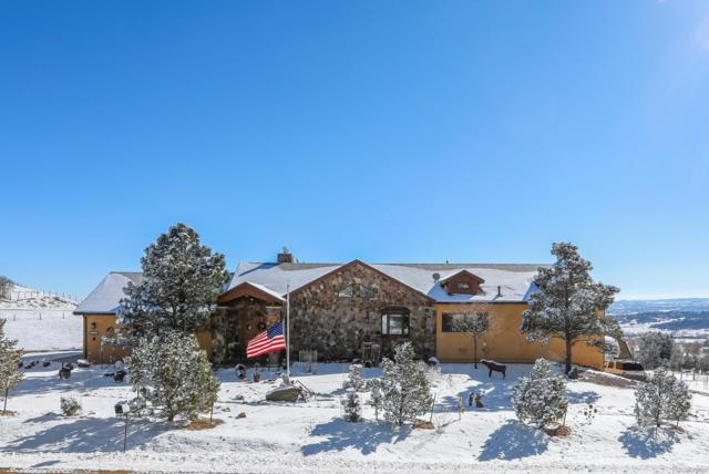 1105 Cathedral Rock Drive, Sedalia, CO 80135 (#6836015) :: Bring Home Denver