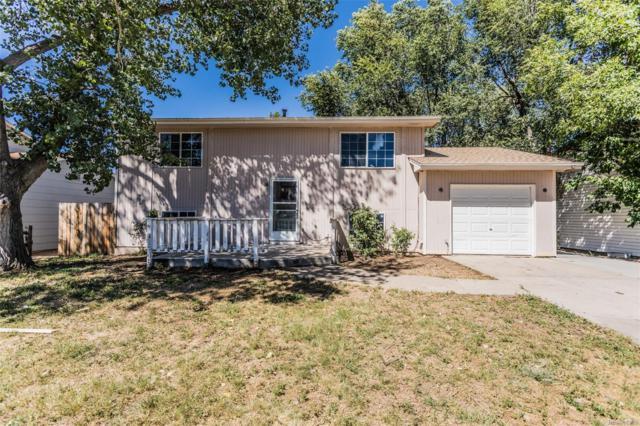 343 Iris Drive, Fountain, CO 80817 (#6836268) :: Wisdom Real Estate