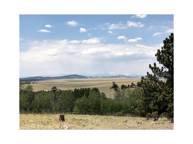 3126 Ute Trace, Hartsel, CO 80449 (MLS #6838691) :: 8z Real Estate