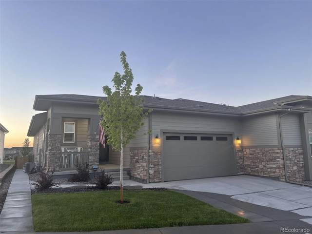 4171 Happy Hollow Drive, Castle Rock, CO 80104 (#6839065) :: The DeGrood Team