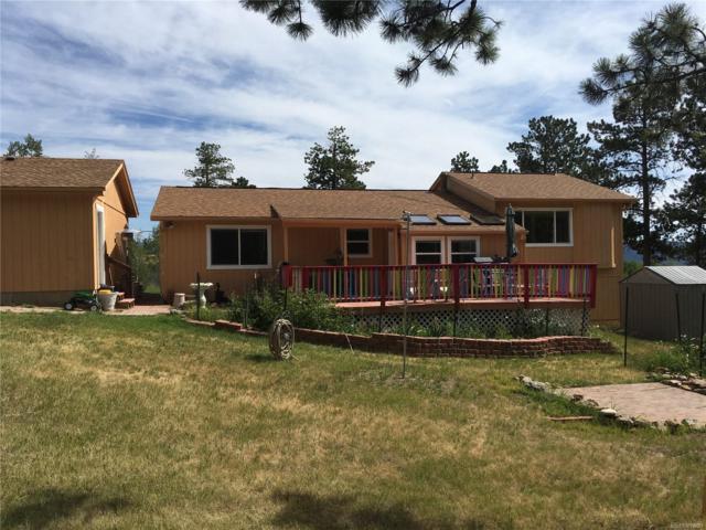 104 Pinon Road, Bailey, CO 80421 (#6840365) :: Bring Home Denver