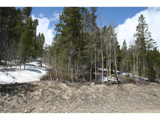 Spruce Street, Alma, CO 80420 (MLS #6840534) :: 8z Real Estate
