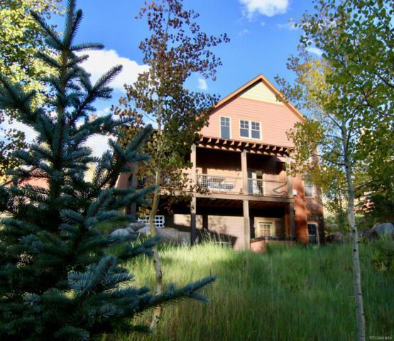 115 Camp Fire Lane, Fraser, CO 80442 (#6840641) :: Bring Home Denver