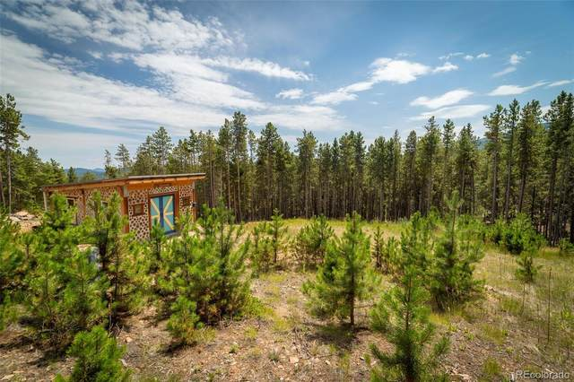 101 Sioux Trail, Evergreen, CO 80439 (#6844263) :: Mile High Luxury Real Estate