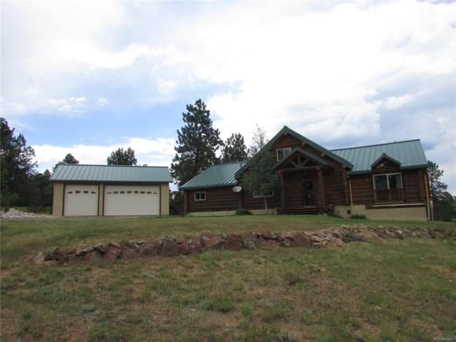 20095 Spring Creek Road, Pine, CO 80425 (MLS #6856064) :: 8z Real Estate