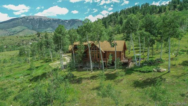 743 Rodeo Drive, Silverthorne, CO 80498 (#6856709) :: The Margolis Team
