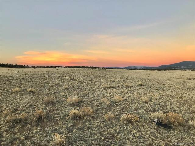 335 Cheyenne Trail, Hartsel, CO 80449 (MLS #6857815) :: 8z Real Estate