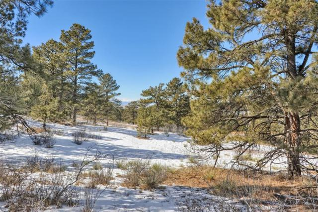 7874 Forest Keep Circle, Parker, CO 80134 (MLS #6857840) :: 8z Real Estate