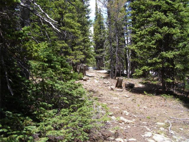 COUNTY LINE Us Forest Service 172.1A Road, Idaho Springs, CO 80452 (MLS #6858233) :: 8z Real Estate