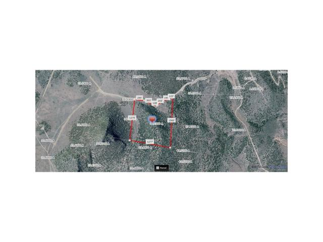 Tract 17 Buck Tail Trail, San Luis, CO 81152 (MLS #6859146) :: 8z Real Estate