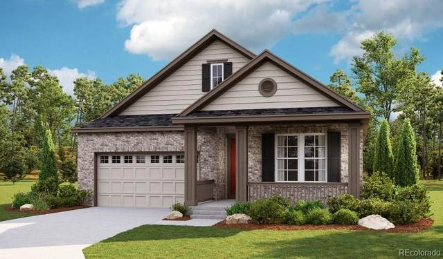 1599 Illingworth Drive, Windsor, CO 80550 (MLS #6859377) :: Bliss Realty Group