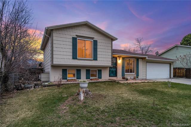 4555 S Zang Street, Morrison, CO 80465 (#6860848) :: The Healey Group