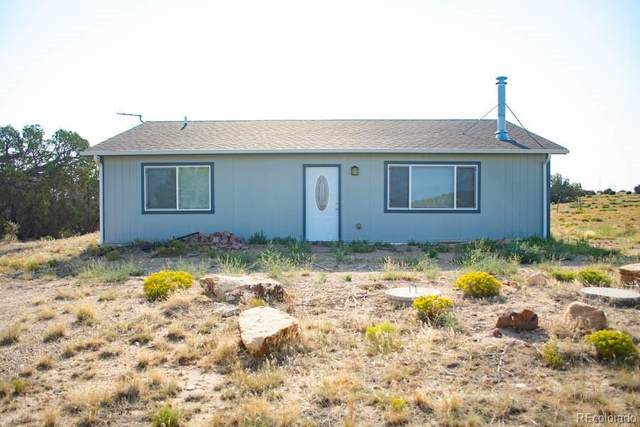 291 Turkey Ridge Road, Walsenburg, CO 81089 (MLS #6861884) :: 8z Real Estate