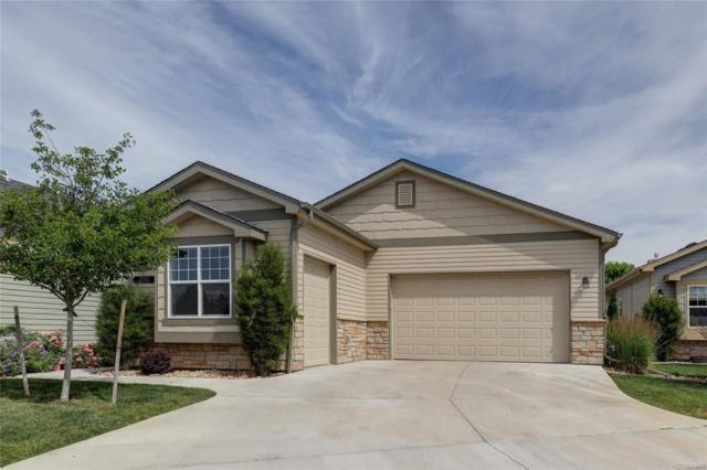 1503 Waterfront Drive, Windsor, CO 80550 (#6862839) :: The DeGrood Team