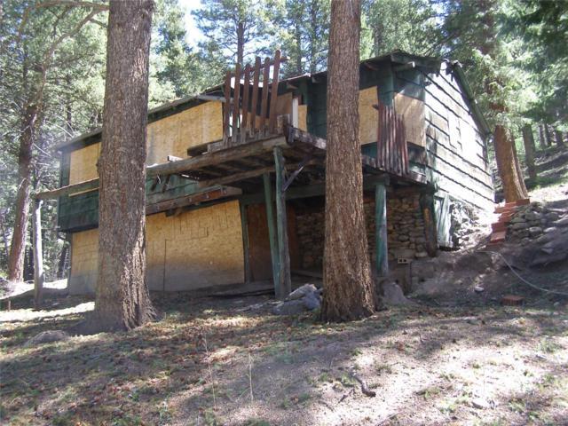 26215 Wild Flower Trail, Evergreen, CO 80439 (MLS #6865505) :: 8z Real Estate