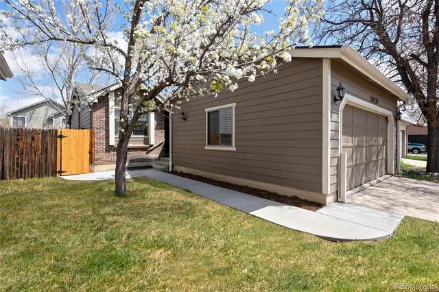 10135 W 81st Avenue, Arvada, CO 80005 (#6866292) :: Berkshire Hathaway HomeServices Innovative Real Estate