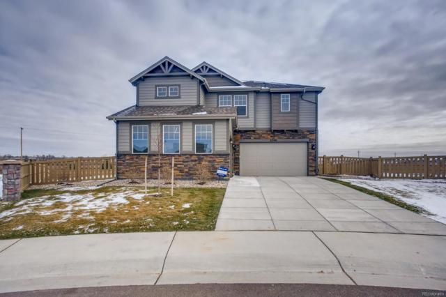 6396 Nymph Lake Court, Timnath, CO 80547 (#6871189) :: The Heyl Group at Keller Williams