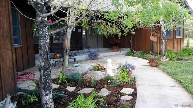 16755 Oak Brush Loop, Peyton, CO 80831 (MLS #6872160) :: Kittle Real Estate