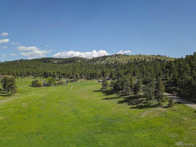 0 Kerr Gulch Road, Evergreen, CO 80439 (#6873646) :: The DeGrood Team