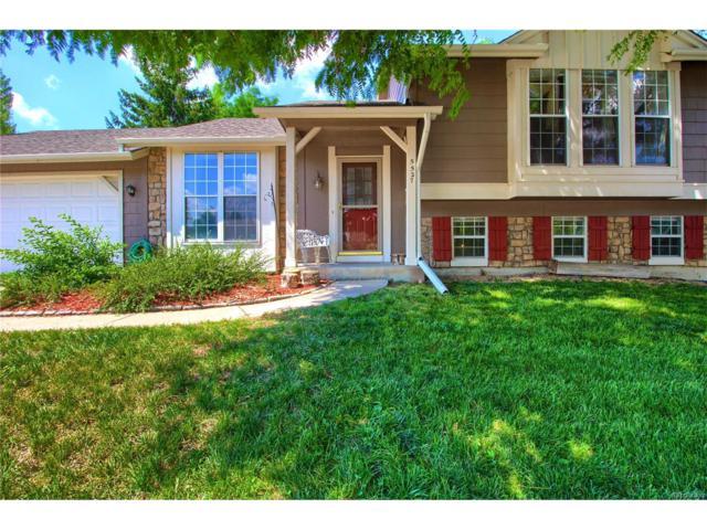 5527 S Netherland Street, Centennial, CO 80015 (MLS #6875325) :: 8z Real Estate