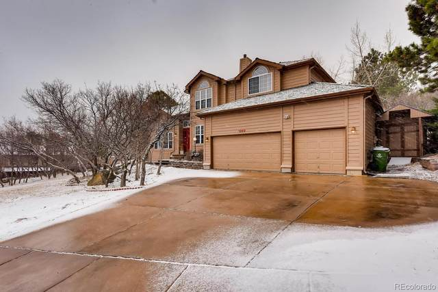1225 Popes Valley Drive, Colorado Springs, CO 80919 (#6876708) :: The Healey Group