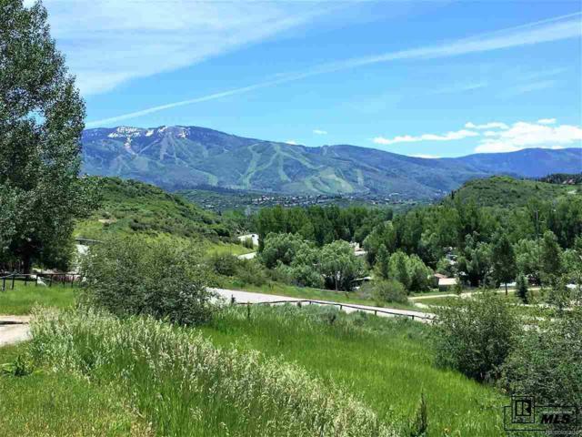 1295 Conestoga Circle, Steamboat Springs, CO 80487 (#6878740) :: Colorado Team Real Estate