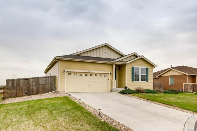 930 Stagecoach Avenue, Lochbuie, CO 80603 (#6878847) :: The Galo Garrido Group