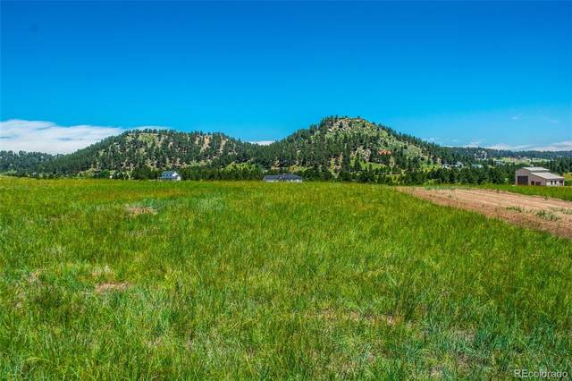 15725 Atlas Loop, Peyton, CO 80831 (#6880590) :: Mile High Luxury Real Estate