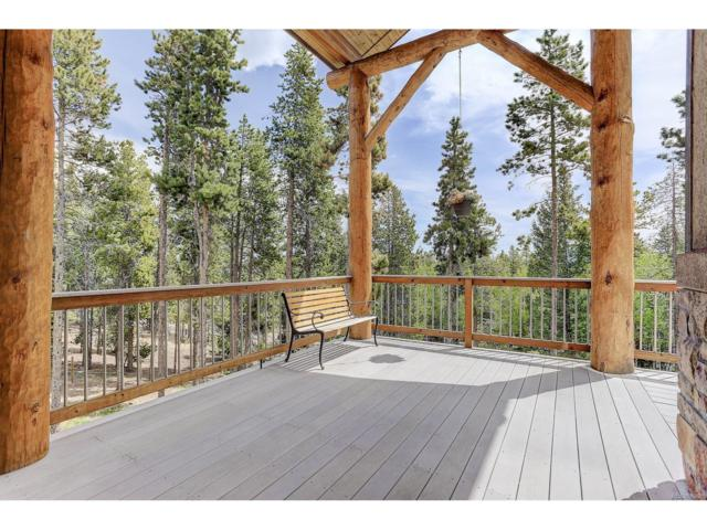 9151 S Warhawk Road, Conifer, CO 80433 (MLS #6881486) :: 8z Real Estate