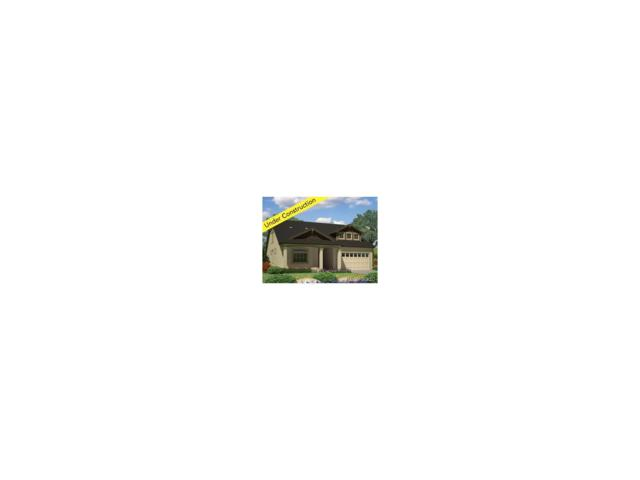 91 Summit Way, Erie, CO 80516 (MLS #6883821) :: 8z Real Estate