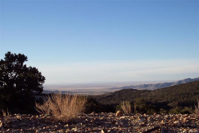 Vacant Land Mining Claim, Saguache, CO 81149 (#6885088) :: The Healey Group