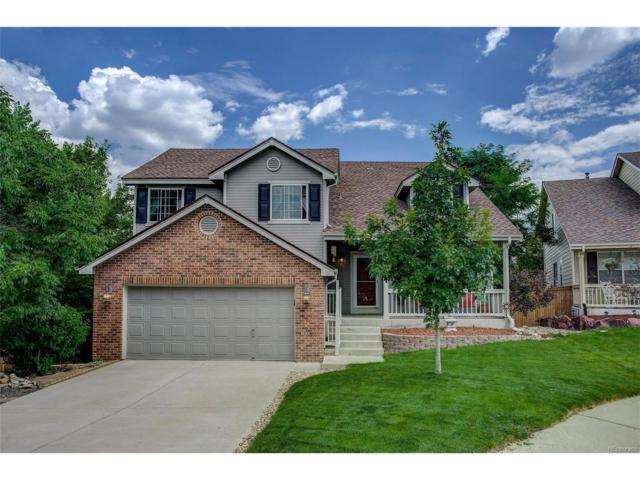 9828 Bucknell Court, Highlands Ranch, CO 80129 (MLS #6885529) :: 8z Real Estate