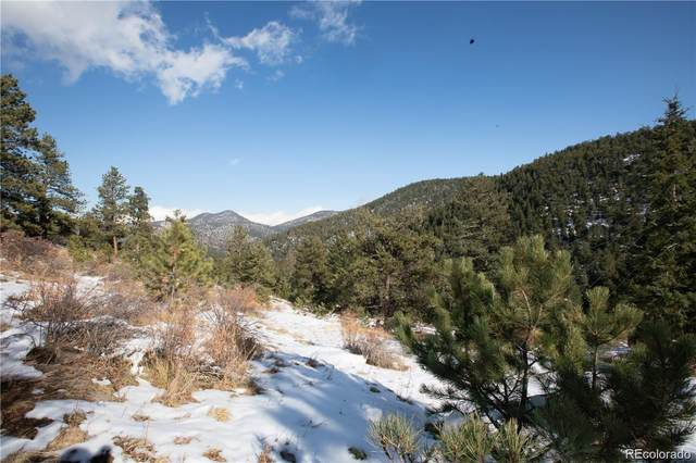 10683 Twin Spruce Road, Golden, CO 80403 (#6888019) :: Mile High Luxury Real Estate
