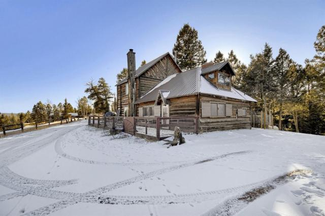 37 Lost Lake Drive, Divide, CO 80814 (#6894177) :: The DeGrood Team