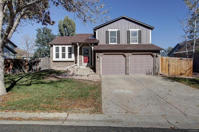 8556 Buckwheat Run, Parker, CO 80134 (#6894903) :: Colorado Home Realty