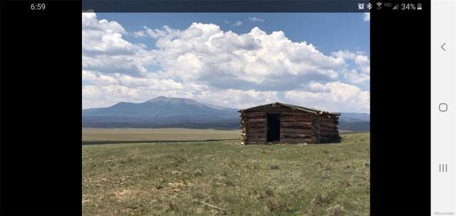 Bare Trail, Hartsel, CO 80449 (#6899481) :: Berkshire Hathaway Elevated Living Real Estate
