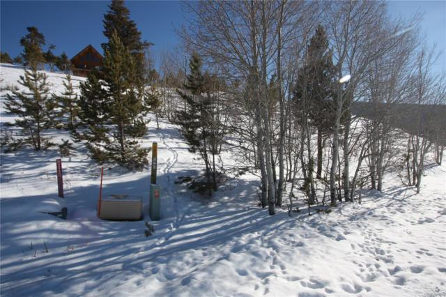 282 County Road 895, Granby, CO 80446 (#6900762) :: James Crocker Team