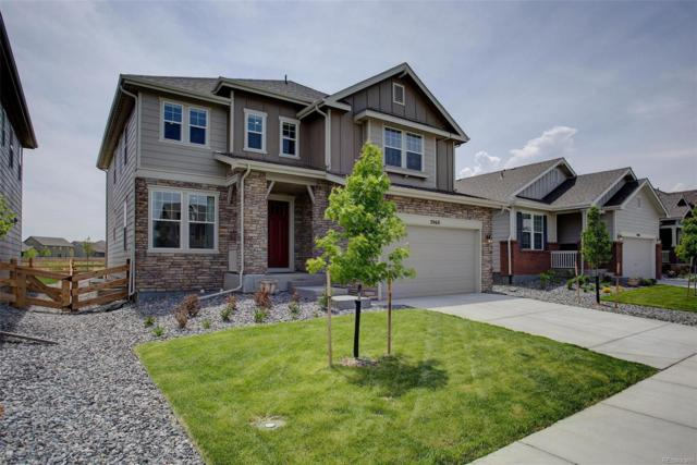 2060 Sicily Circle, Longmont, CO 80503 (#6901897) :: Bring Home Denver