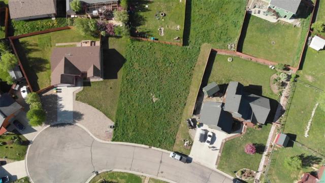 303 Lilac Court, Hayden, CO 81639 (#6903092) :: Wisdom Real Estate